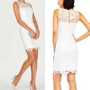 Adrianna Papell Illusion Lace Sheath